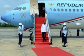 Presiden akan tinjau lumbung pangan di Kalimantan Tengah