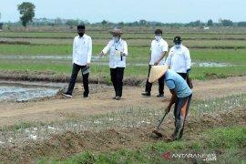Presiden Jokowi minta waspadai fenomena La Nina sebabkan peningkatan curah hujan bulanan