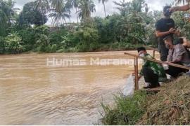 Benih ikan semah disebar di Sungai Batang Merangin