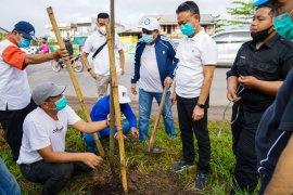 Pemkot Pontianak dan Bank Kalbar tanam 200 bibit pohon bungur dan pelae