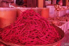 Harga cabai merah di pasar tradisional di Tanah Datar terus naik