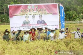 Pemkab Belitung komitmen lindungi lahan pertanian pangan berkelanjutan