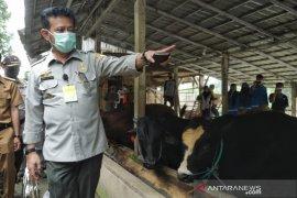 Mentan pastikan stok nutrisi aman saat pandemi COVID-19