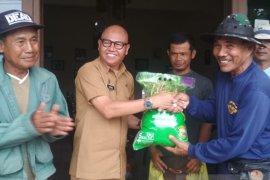 341 hektare sawah di Kota Sukabumi ditargetkan jadi lahan pertanian abadi