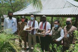 Kemenristek dorong madu trigona hasil budi daya warga Lombok Utara diekspor