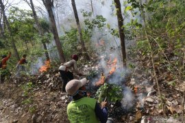 Simulasi penanganan kebakaran hutan