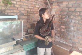 Sella gadis Sebapo si penakluk ular