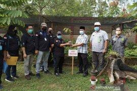 Dishut Kaltim bagikan ribuan bibit pohon untuk warga