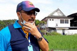 Produksi beras Kalbar masih surplus di tengah pandemi
