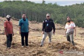 Dinas Kehutanan Kaltim laksanakan PHR 300 hektare