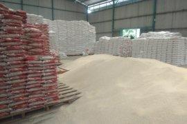 Mitra Bulog Lebak-Pandeglang jamin beras medium untuk PKM-PKH miliki kualitas
