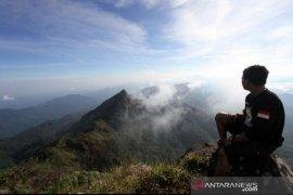 Pemprov kembangkan hutan wisata tingkatkan kesejahteraan warga