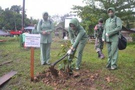 Anggota Persit tanam pohon penghijauan di lokasi TMMD di Pulau Hanaut