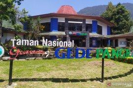 Pendakian Gunung Gede-Pangrango dibuka dengan protokol kesehatan