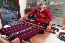 Semangat Oma Min lestarikan tenun Kepulauan Tanimbar di usia senja