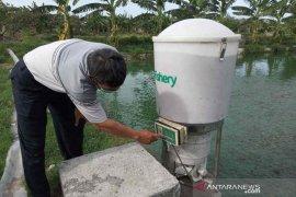 Berkat teknologi, pembudi daya lele Cirebon akui produksi meningkat