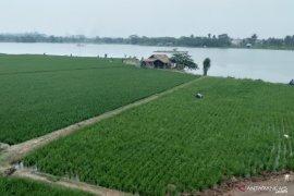 Dinas Pertanian Karawang salurkan bantuan pupuk organik cair untuk petani