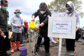 Wamen LHK ikuti Padat Karya Penanaman Mangrove di Buleleng