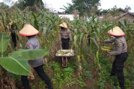 KLHK apresiasi pembinaan  ProKlim Tanjungpinang