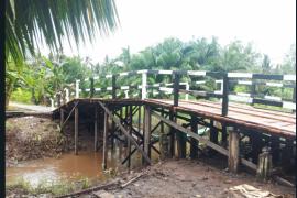 Perbaikan infrastruktur diharapkan dongkrak produksi Kopi di Pulau Hanaut