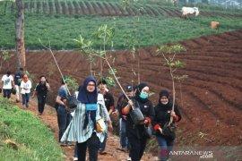 Sumpah Pemuda, mahasiswa Bandung tanam pohon cegah banjir