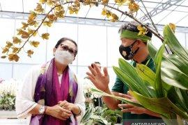Putri Koster inginkan pameran khusus anggrek di Bali