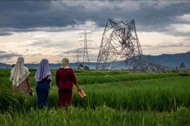 Menara listrik roboh di Batang