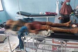 Seorang warga Rejang Lebong tewas diseruduk babi hutan