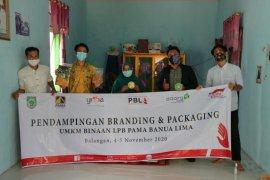 LPB Pama Banua Lima perkuat Branding UMKM dengan pendampingan