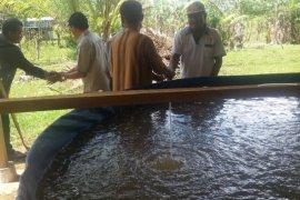 Pokdakan-koperasi Mukomuko terima dana beli benih ikan