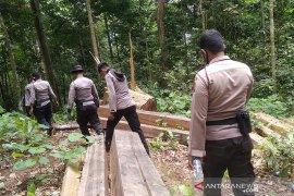 Polda Aceh membidik cukong pembalakan liar