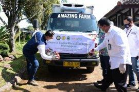 Gubernur Ridwan Kamil lepas ekspor produk sayuran Jawa Barat