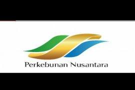 Industri Nabati  Lestari telah ekspor 95 persen produk CPO