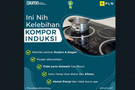 Kolaborasi, PLN - BTN Dorong Pengembang Perumahan Lirik Kompor Induksi