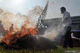 Sumbar masuk daerah rawan peredaran Narkoba, BNNP: Perlu penanganan serius