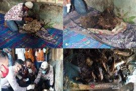 Boru Hombing yang menghilang ditemukan kondisi tinggal tulang belulang di hutan