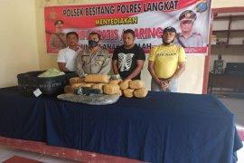 Polsek Besitang tangkap warga Tanjung Pinang bawa 23,5 kilogram ganja