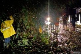 Jalur utama selatan Cianjur kembali terputus akibat pohon tumbang
