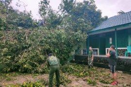 Posko Pilkada milik Kodim Putussibau ditimpa pohon besar