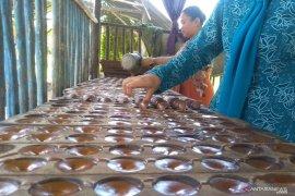 Produsen gula kelapa di Penajam kesulitan penuhi pasar