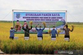 Bupati HSS hadiri syukuran panen raya padi rawa