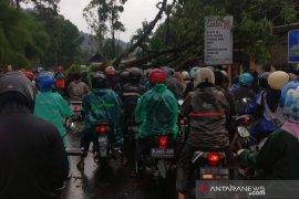 BPBD Kabupaten Cianjur tuntaskan penanganan bencana alam di sejumlah wilayah
