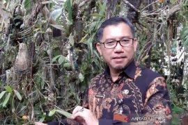 Pjs Bupati Sintang tegaskan aktivitas perkantoran disiplin terapkan protokol kesehatan