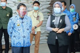 Nunik pantau ketersediaan pupuk di Lampung Timur