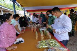 Dinas Pangan Sulteng promosi penganekaragaman konsumsi pangan  di Morut