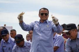 Menteri Edhy kunjungi Amerika guna perkuat budidaya udang Indonesia