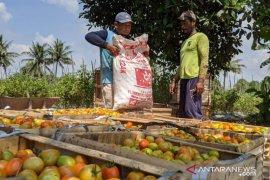 Kawasan Agrowisata Kukar dibentuk BUMDes Bersama