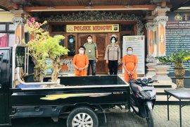 Polisi bekuk dua pria Jual tanaman variegata curian senilai belasan juta