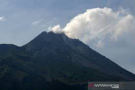 Suara guguran terdengar sembilan kali dari Gunung Merapi