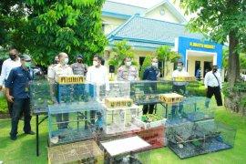 Polda Jatim gagalkan penyelundupan ratusan satwa dilindungi dari Banjarmasin